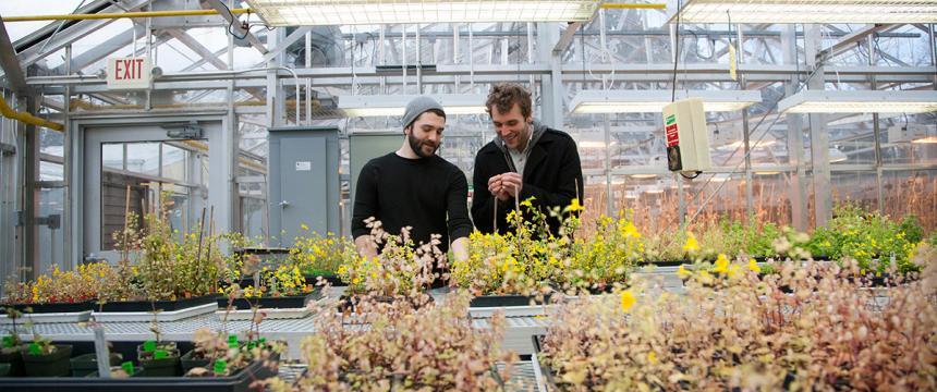 A graduate and an undergraduate male student in one of the department's greenhouses